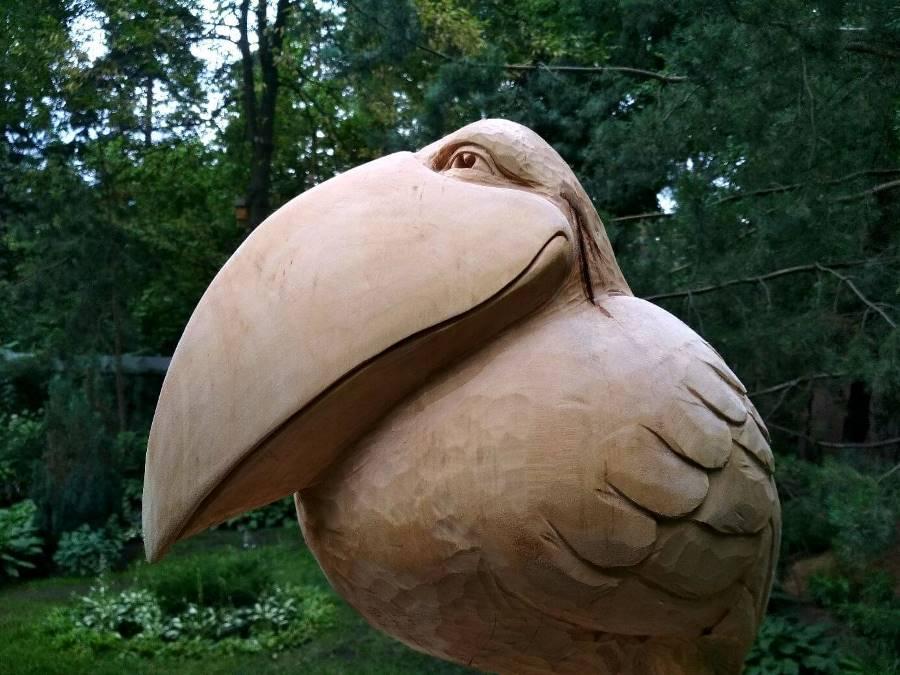 Скульптура из дерева. Птица