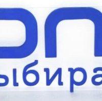 "Логотип ""Ozon.ru"""